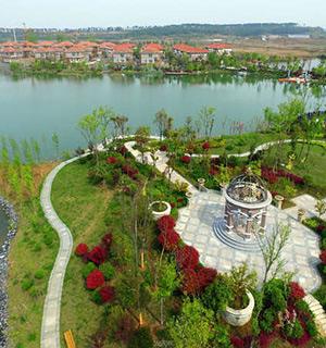 甘肃青海市格尔木湿地公园